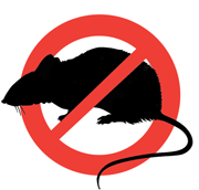 Уничтожение тараканов, клопов Тула